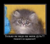 Тема Темыч, 7 мая 1991, Омск, id129187378