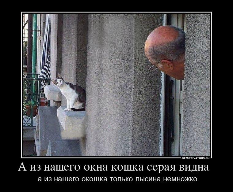 Скачать концерт известных российских юмористов Боги сами изменили