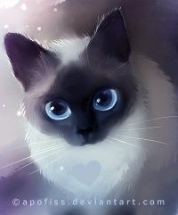 коты-воители синяя звезда фото