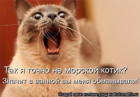 РЕЛАКСАЦИЯ))))) - Страница 4 X_7c79b27a