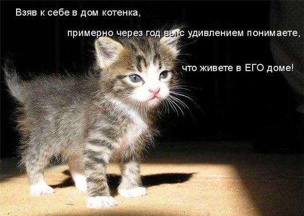 РЕЛАКСАЦИЯ))))) - Страница 4 X_a0b16047