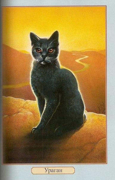 Вы можете помочь коты воители фан история вики, дополнив её. Клянётся верностью племени и воинскому закону и нарекается воинским именем.