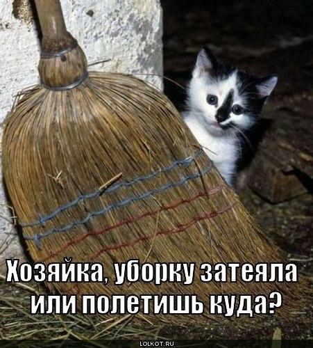 http://cs10556.vkontakte.ru/u968029/-14/x_1afb46e8.jpg