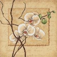 """Схема вышивки крестом  """"Восточные орхидеи """" (Dimensions) счетный крест размер: 30х30 см канва: Аида 14."""