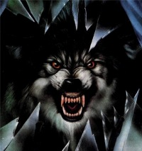 фото волки злые