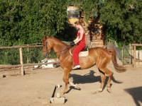 Галина Маснева, 11 декабря 1990, Луганск, id133280288