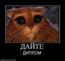 Фото Екатерины Палановой №3