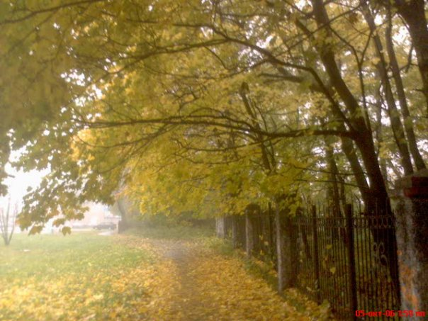 http://cs1057.vkontakte.ru/u1196112/7528165/x_15f7a488.jpg