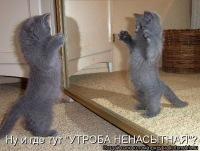 Елена Траневская, 6 июля , Светлоград, id146890100