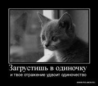 Юля Шейко, Минск, id117945653