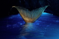 Мой хвост русалки, в цвете морской волны - YouTube