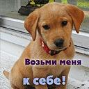 Иришка Сазонова, 8 марта , Ржев, id139737715