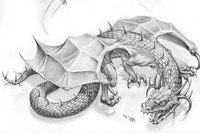 """Оригинал схемы вышивки  """"дракон """" ."""