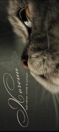 Dj Cat, 27 января , Омск, id99791070