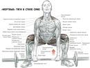 """Именно из этих упражнений состоит  """"пауэрлифтинг """".  Разное.  Становая тяга входит в тройку основных упражнений с..."""