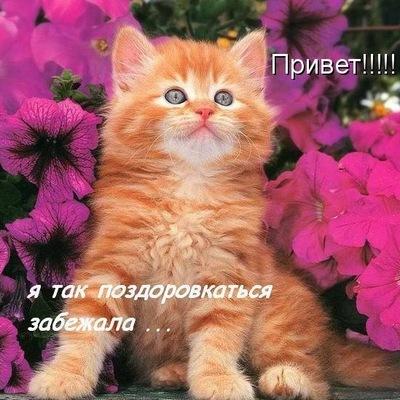 Татьяна Земцова, 15 ноября , Умба, id123641337