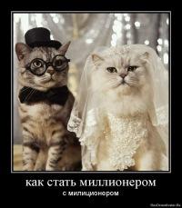 Котик Ильин, 14 августа , Семилуки, id170470020