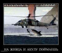 Влад Бондаренко, 20 декабря , Красноярск, id119740194