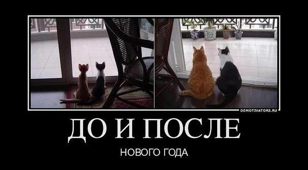 http://cs10621.vkontakte.ru/u4422861/146644740/x_95392838.jpg