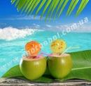 Сток-фото: fresh tender green coconuts straw beach cocktails.