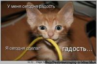 Юра :), 22 января 1990, Николаев, id102579018