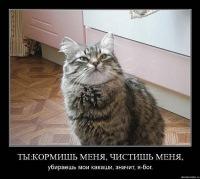 Ket Просто, 2 июня 1989, Москва, id104958257