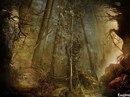 Эм.  Сюжет: Тихий мир лесов, обитель магии и волшебства.  Речь пойдет о поселении, о клане лесных эльфов.