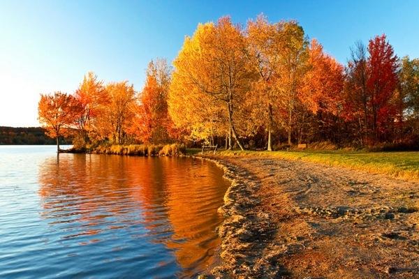 Осень в самом разгаре.  Все осенние краски ярки и неподражаемы!