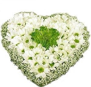 035 Композиция из хризантем. зелень, декор. хризантемы, гипсофила.