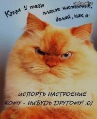 Леша Попов, 3 марта 1993, Санкт-Петербург, id86071267
