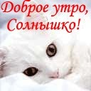 Дашуля Тимофеева, 1 ноября 1963, Ленинск-Кузнецкий, id158572011