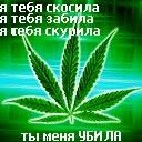 Куся Бульба, 26 ноября , Мелитополь, id115775646