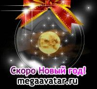Светлана Лашкина, 17 июля , Пушкино, id35988306