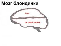 Света Кушниренко, 7 августа 1999, Одесса, id124072795