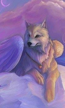http://cs10660.vkontakte.ru/u7038385/128670696/x_44b28c5a.jpg