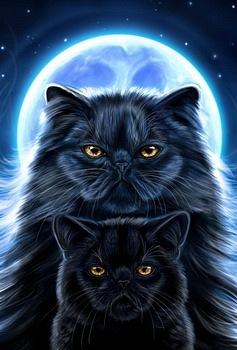 http://cs10660.vkontakte.ru/u7038385/128670696/x_5cf86740.jpg