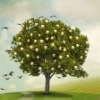 «GreenLife» Ландшафтный дизайн
