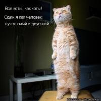 Котя Репин, 18 мая , Киев, id105948892