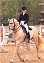 Вокруг манежа - фотографии - Катя - конники.