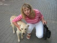 Елена Козлова, 29 декабря , Ростов-на-Дону, id115177742