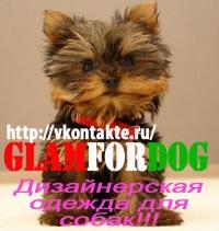 Glamfordog Ru, 8 сентября 1989, Орел, id151110757