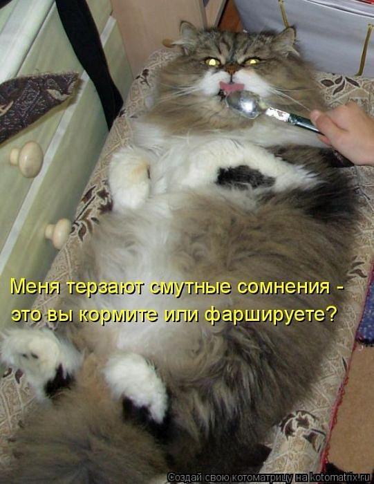 http://cs10675.vkontakte.ru/u13318617/118696025/y_3e935d3c.jpg