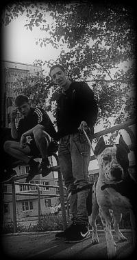Антон Киселёв, 24 января 1994, Красноярск, id135516318