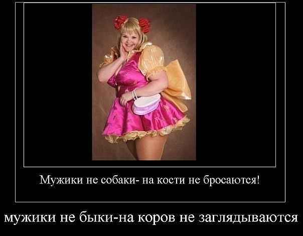 http://cs10677.vkontakte.ru/u3470146/139224365/x_a10638a6.jpg