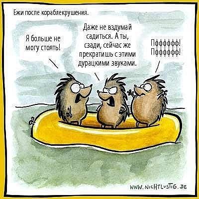 http://cs10677.vkontakte.ru/u39426032/93255247/x_e557cf2c.jpg