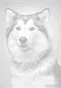 ===ASCII ART***(((РиСоВаНиЕ