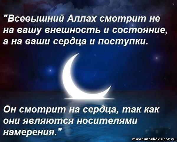 ... картинки скачать бесплатно: allpictures4u.ru/korol_pik_139931.html