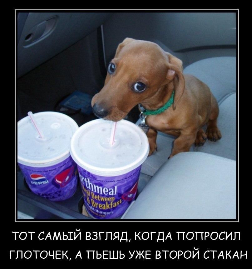 Российский коньяк выдержанный кв лезгинка продолжайте разрабатывать