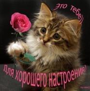 Желаю счастья целый ворох, Улыбок, радости букет, Друзей надежных и веселых, Счастливой жизни, долгих лет.