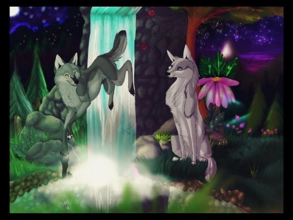 Картинки волчат и волков